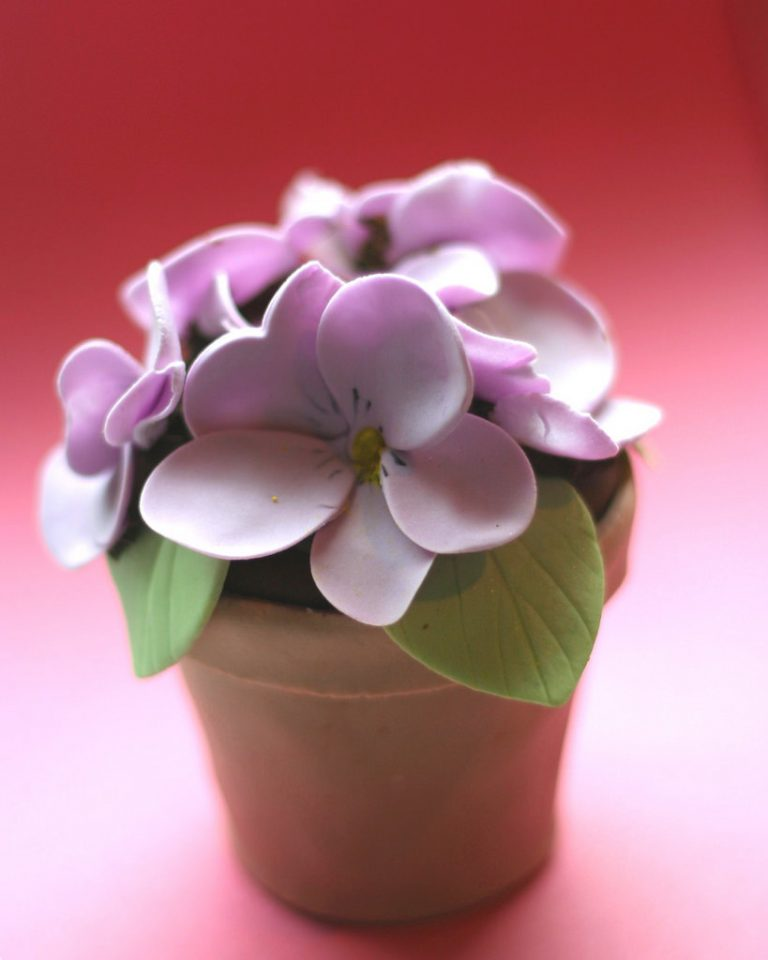 Baby shower cake: Flower pot cake with purple flowers in a terracotta pot.
