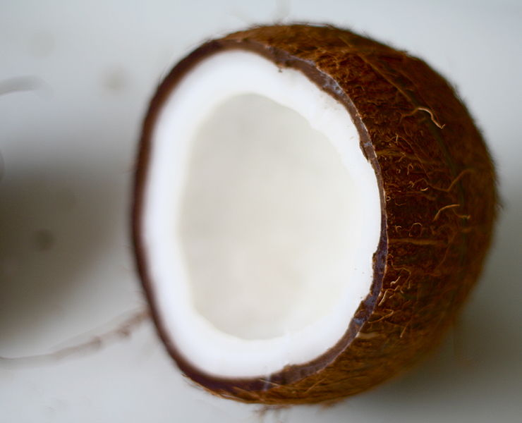 types of flour -- coconut