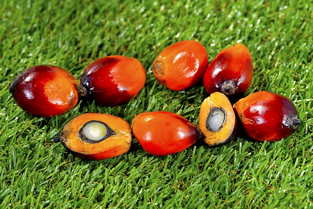 types of oil- palm fruit palm oil